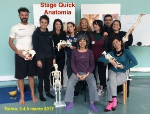 Quick anatomia foto gruppo